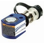 Williams 6C05T00 5T Single Acting Cylinder 0.25''
